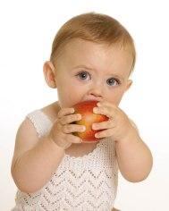 baby fruts