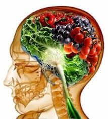 brain magnesium